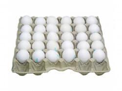 Яйцо 1 сорт